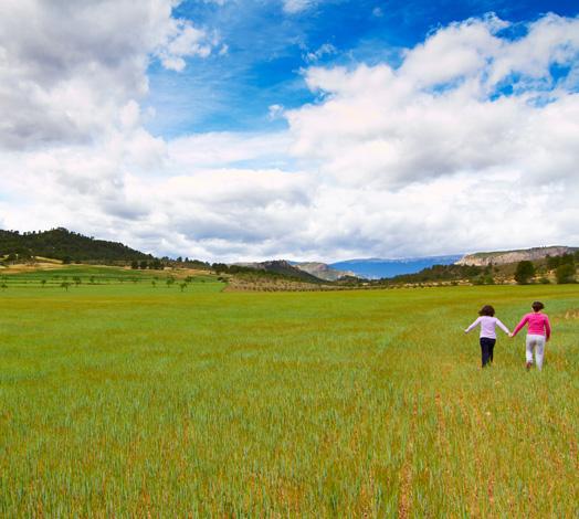 Agricultura ecológica El Cantero de Letur